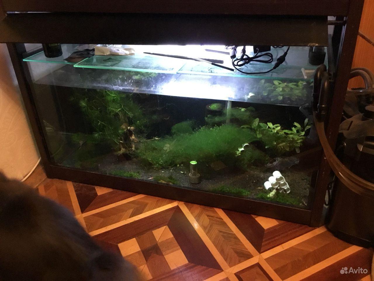 Аквариум 94x41x41 см (160 литров)