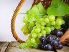 Виноград отборный
