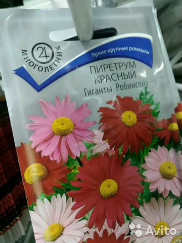 Цветы  89775052387 купить 1