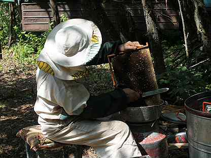 Мёд (Мед) со своей пасеки