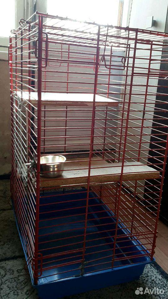 Клетка для грызунов  89633218399 купить 3
